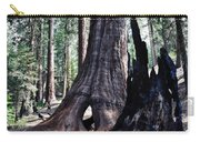 General Grant Grove Sequoia Window Carry-all Pouch