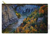 Genesee River Gorge II Carry-all Pouch