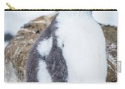 Gentoo Penguin With Turned Head On Snow Carry-all Pouch
