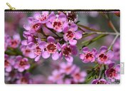 Geraldton Wax Flowers, Cwa Pink - Australian Native Flower Carry-all Pouch