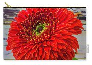 Gerbera Daisy Against Old Wall Carry-all Pouch
