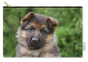 German Shepherd Puppy IIi Carry-all Pouch by Sandy Keeton