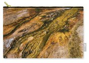 Geyser Basin Springs 2 Carry-all Pouch
