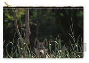 Ghost Wolf Carry-all Pouch by DigiArt Diaries by Vicky B Fuller