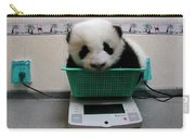 Giant Panda Ailuropoda Melanoleuca Baby Carry-all Pouch by Katherine Feng