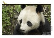 Giant Panda At Rest Carry-all Pouch