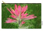 Giant Red Paintbrush Carry-all Pouch