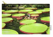 Giant Water Lily Platters Carry-all Pouch