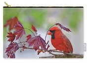 Give Me Shelter - Male Cardinal Carry-all Pouch by Kerri Farley