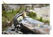 Glacier Mountain Chipmunk Carry-all Pouch