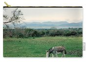 Glenbeigh Ireland Carry-all Pouch