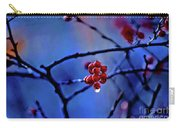 Glistening Hope Carry-all Pouch