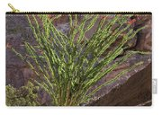 Glowing Ocotillo Carry-all Pouch