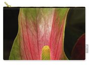 Glowing Rays Set Dreams Ablaze Carry-all Pouch