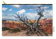 Gnarly - Bryce Canyon Carry-all Pouch