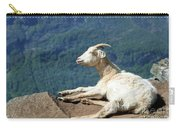 Goat Enjoy The Sun Carry-all Pouch