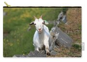 Goat Posing Carry-all Pouch