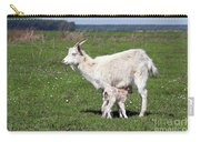 Goat With Just Born Little Goat Spring Scene Carry-all Pouch