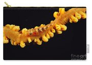 Goby Carry-all Pouch