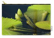 Going Green Carry-all Pouch
