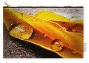 Golden Droplets Carry-all Pouch