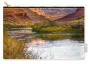 Golden Light Carry-all Pouch by Marilyn Hunt