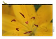 Golden Lily Carry-all Pouch