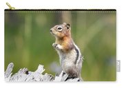 Golden Mantled Ground Squirrel Carry-all Pouch
