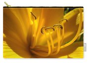 Golden Orange Lily Art Print Lilies Flowers Baslee Troutman Carry-all Pouch