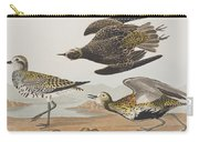 Golden Plover Carry-all Pouch