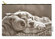 Golden Retriever Dog Sleeping With My Friend Sepia Carry-all Pouch