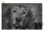 Golden Retriever In Black And White Carry-all Pouch