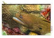 Goldentail Moray Carry-all Pouch