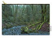 Goldstream Park Panorama Carry-all Pouch