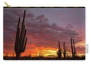 Goodnight Tucson Carry-all Pouch