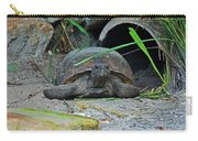 Gopher Tortoise II Carry-all Pouch