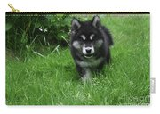 Gorgeous Alusky Puppy Dog Creeping Through Grass Carry-all Pouch