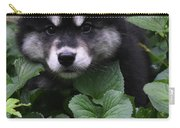 Gorgeous Alusky Puppy Playing Hide And Seek  Carry-all Pouch