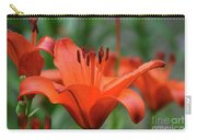 Gorgeous Blooming Orange Lily Flowering In A Garden Carry-all Pouch