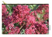 Gorgeous Cluster Of Red Phlox Flowers In A Garden Carry-all Pouch