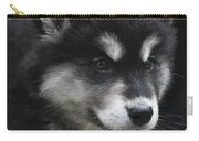 Gorgeous Eight Week Old Alusky Puppy Dog Carry-all Pouch