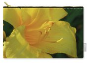 Gorgeous Flowering Yellow Daylily Blooming In A Garden Carry-all Pouch