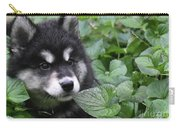 Gorgeous Fluffy Alusky Puppy Peaking Out Of Plants Carry-all Pouch