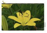 Gorgeous Yellow Lily Growing In Nature Up Close Carry-all Pouch