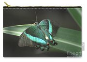 Gorgoeus Close Up Of This Emerald Swallowtail Butterfly  Carry-all Pouch