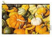 Gourds Pile 1 A Carry-all Pouch