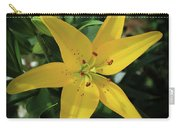 Grace Flowers Daylily Art Carry-all Pouch