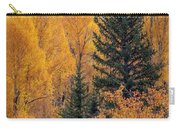 Grand Teton Fall Carry-all Pouch