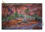 Grand Wash - Capitol Reef Carry-all Pouch