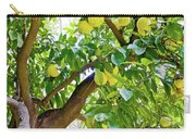 Grapefruit Tree At Pilgrim Place In Claremont-california   Carry-all Pouch